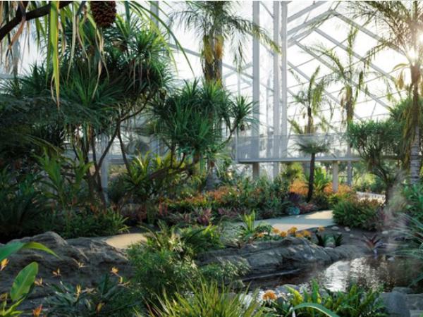 91种 热带花园和景观植物3d模型下载 Globe Plants – Bundle14 – Tropical Garden 02