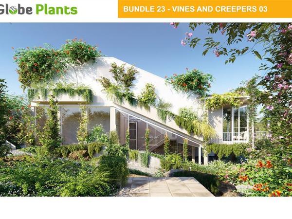 108种 爬山虎葡萄藤3D模型下载 Globe Plants Bundle 23 – Vines and Creepers 03