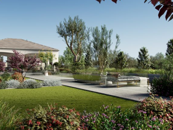 75种 灌木\树木3d模型下载Globe Plants – Bundle03 – Garden Plants