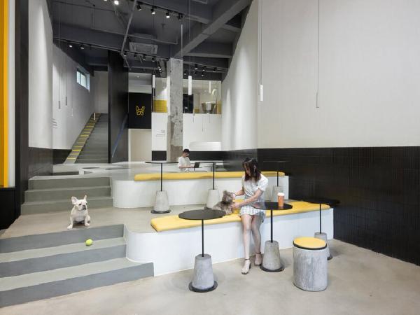 宠物咖啡店,一个宠物和主人同时社交的场所
