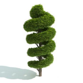 现代风格灌木
