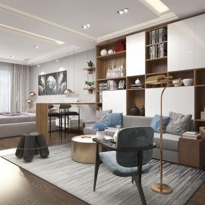 现代单身公寓 沙发 书柜3D模型