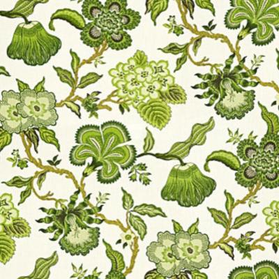 墙纸植物藤曼