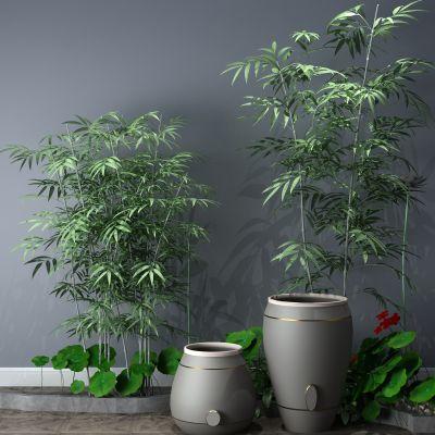 植物,小品,假山,喷泉