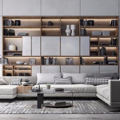 现代沙发、书柜、茶几组合