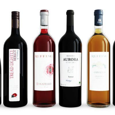 酒瓶酒水红酒