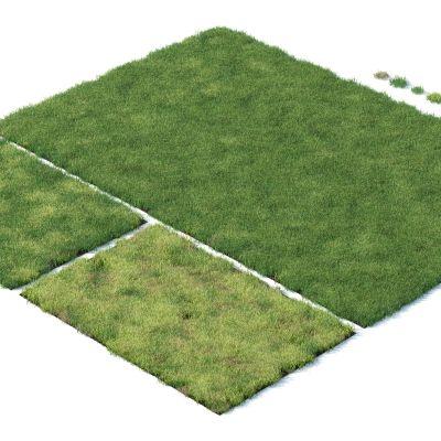 现代草坪,草地,草坪,杂草植物,草堆3D模型