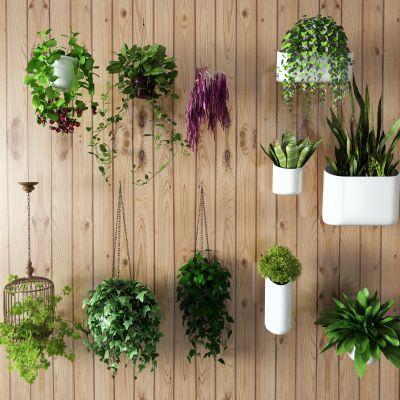 新中式盆栽 吊篮3D模型