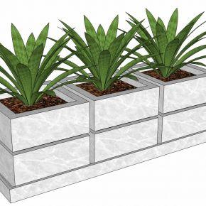 现代植物盆栽花盆花槽